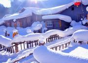 【0自费-0自费至尊寒地温泉】亚布力+中国雪乡+寒地温泉纯玩三日游(真正纯玩,21项精华景点亚布力滑雪、梦幻家园、马拉爬犁、世界第一滑道、雪地摩托大秃顶子山、爸爸去哪大雪谷、与傻狍子亲密接触、寒地温泉)