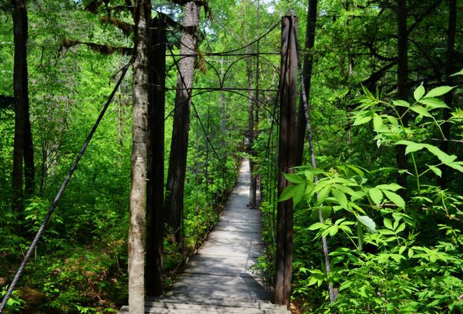 五营森林公园-(2)